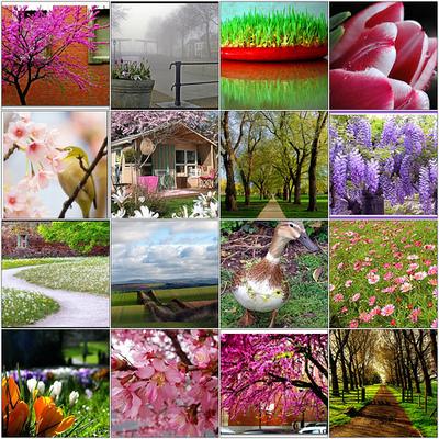 Springmosaic_2